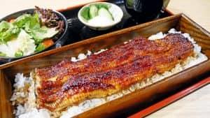 Блюдо из угря - Unagi