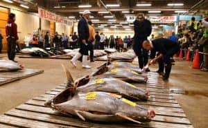 Рынок Tsukiji