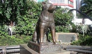 Статуя собачки Hattiko
